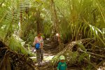 17_Coconut_jungle_on_Ile_Bodam