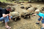 04_Visiting_the_giant_Aldabra_tortoises_(Aldabrachelys_gigantea)_at_La_Vanille_(Michael_Plank)