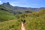 08_Hiking_in_the_beautiful_Drakensberg_Mountains_with_the_Amphitheater_in_the_background