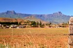 16_The_Amphitheater_in_the_morning_lights_(Drakensberg_Mountains)