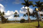 05_Wailoa_River_State_Park_in_downtown_Hilo